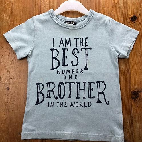 Next T-shirt 12-18 months