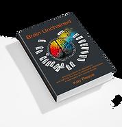 3D Flat Book_Brain Unchained_DVG Star_14