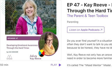 The Parent and Teen Toolbox Podcast Episode 47