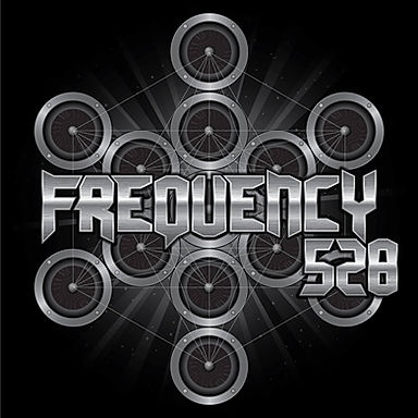 Frequency 528 Silent Disco