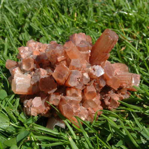 Aragonite Gem Essence: PHYSICALLY GROUNDED