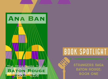 Book Spotlight: Strangers Saga