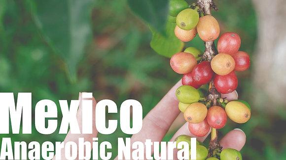 MEXICO Anaerobic Natural, FINCA EL PARAISO