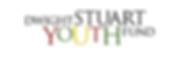 DSYF Logo.png
