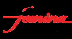 vox femina logo (1).png