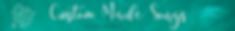 Copy of Website Header CMS.png