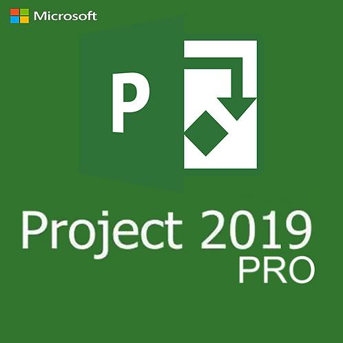 MS Project 2019 Pro - Professional Cartão Novo