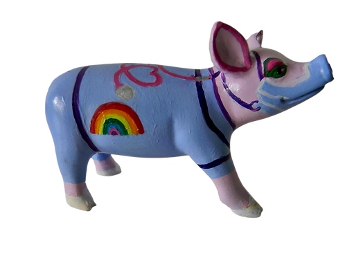 NHS Nurse mini pig - PP-R1440