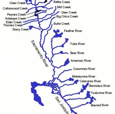 Central Valley Rivers