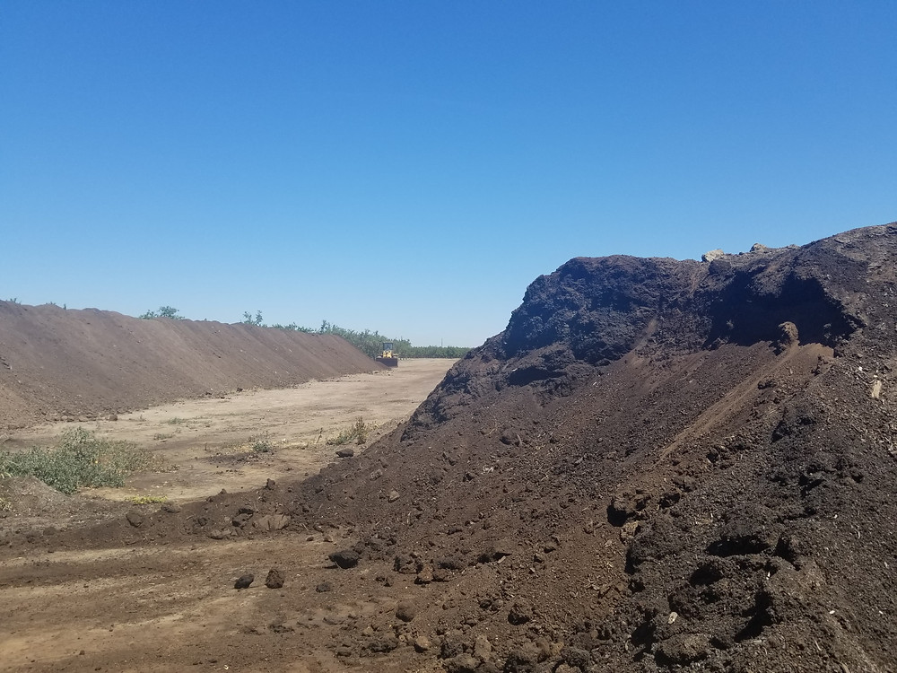 Taking last year's compost that they worked on all year and Antonio is moving it to a big pile to use it next winter. They are readying these rows of compost and separating by last and current years products. 2019 crop is the pile on the right.
