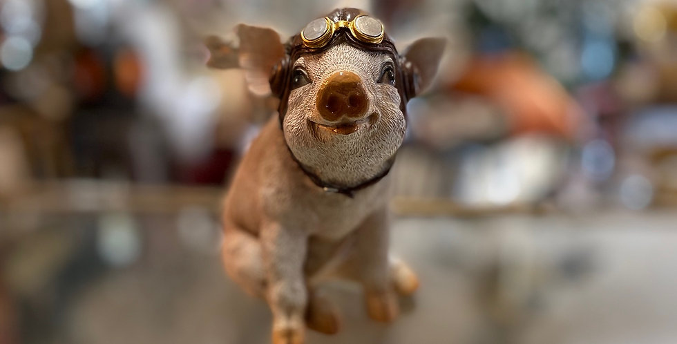 Pilot Piggy