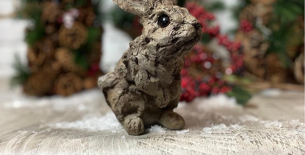 Very Cute Display Bunny