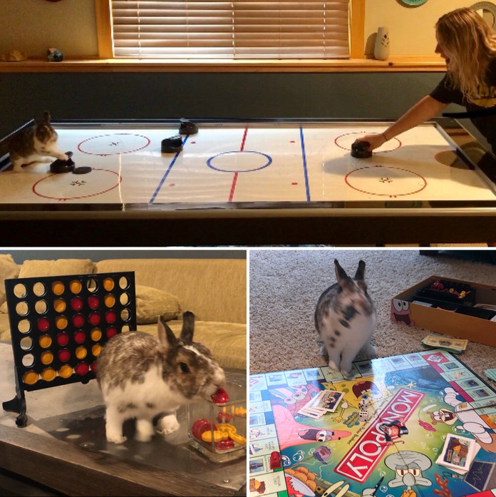 Toby has a Game Night!
