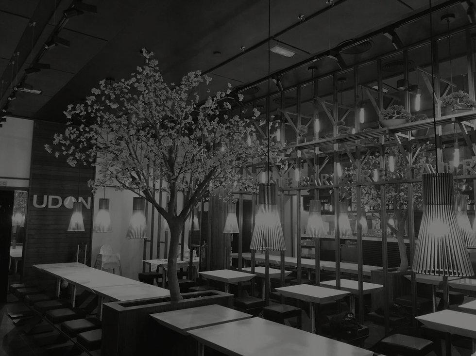 UDON reformas en locales de centros comerciales para implantación restaurantes orientales reformas integrales llave en mano y fabricacion de mobiliario para restaurantes restauracion