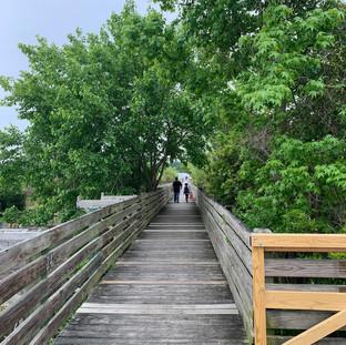 Boardwalk Walk 2021.jpg