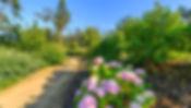 monte-real-hotel-termas-spa-galleryms_32
