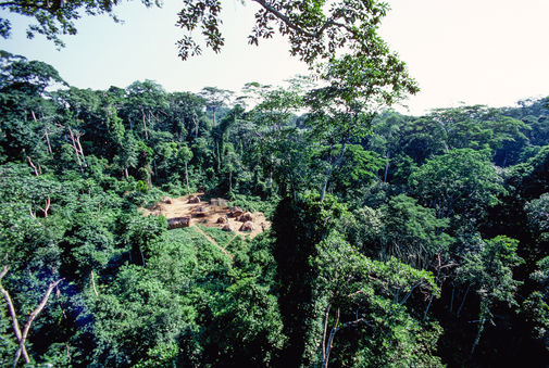 Mbongwa, a Baka village in the forest in far south eastern Cameroun. Our home for two years
