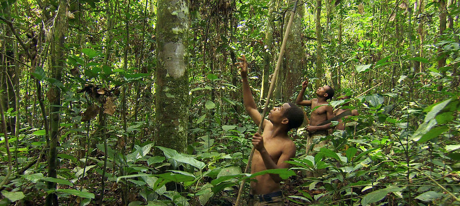 Baka People of the Rainforest, Baka a Cry from the Rainforest