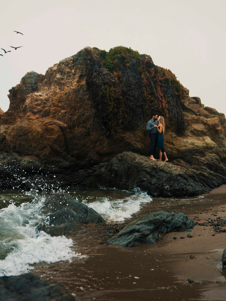 Darcy and Reza's Engagement Session in Mendocino, CA