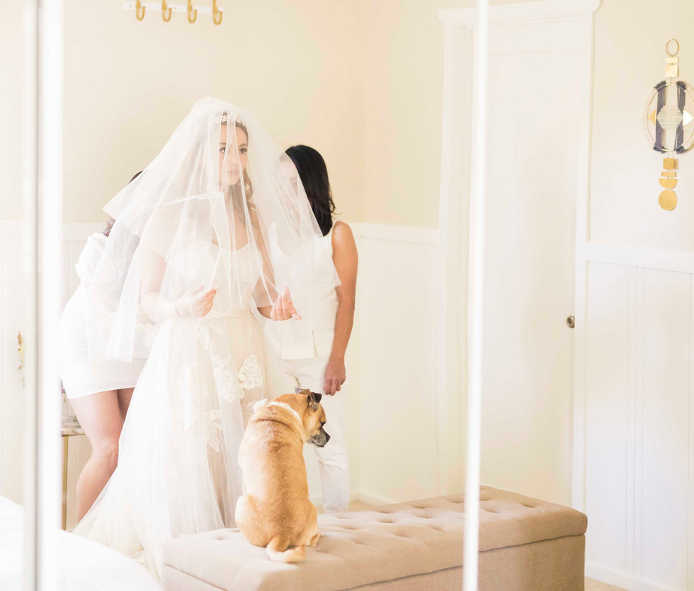 Brandi Rollins Photo_wedding718.jpg