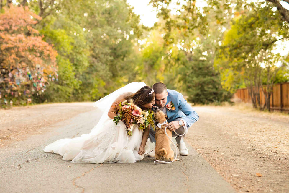 Brandi Rollins Photo_wedding733.jpg