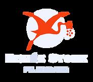 rs logo B.png