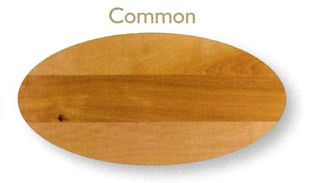 Yellow Birch Common.JPG