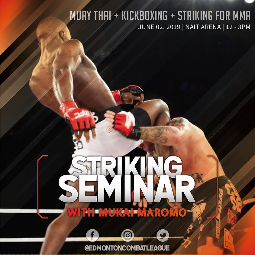 Fighter University Striking Seminar