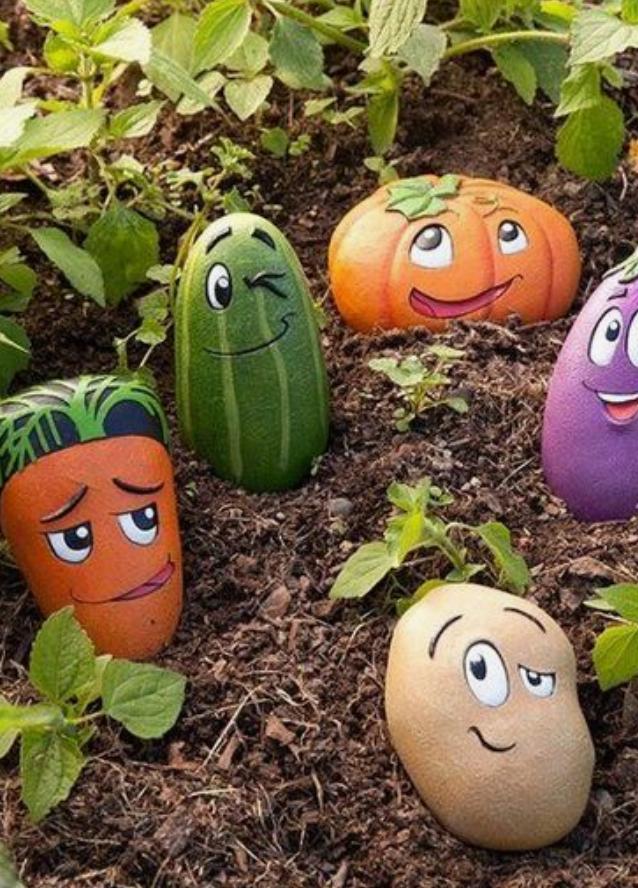 Pedras e Legumes