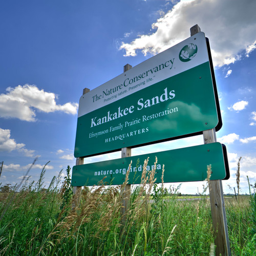The Nature Conservancy at Kankakee Sands