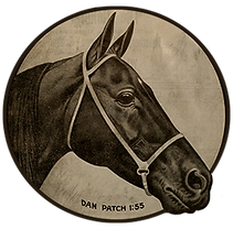 Dan Patch.png
