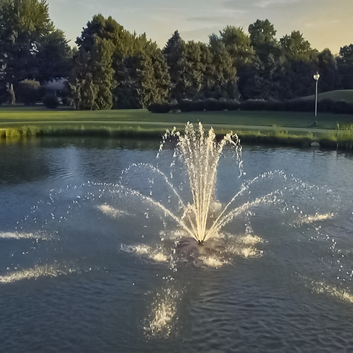 Dave's Pond at Cast Park