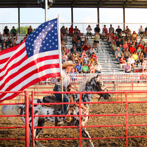 Rodeo at The County Fair