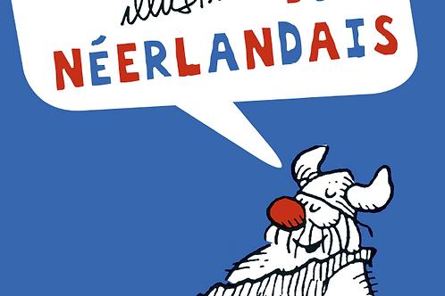Grammaire Illustrée du Néerlandais - Dutch Grammar Book