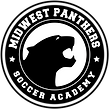 PANTHERS-OUTLINES-BLACK.png
