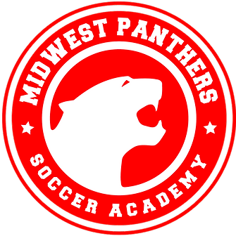 PANTHERS-OUTLINES-RED-510PX.png
