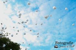 Stichting Ramon scoort tegen kanker foto 5  Benefietconcert 6 oktober.jpg