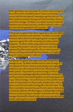 BLACK LIVES MATTER...
