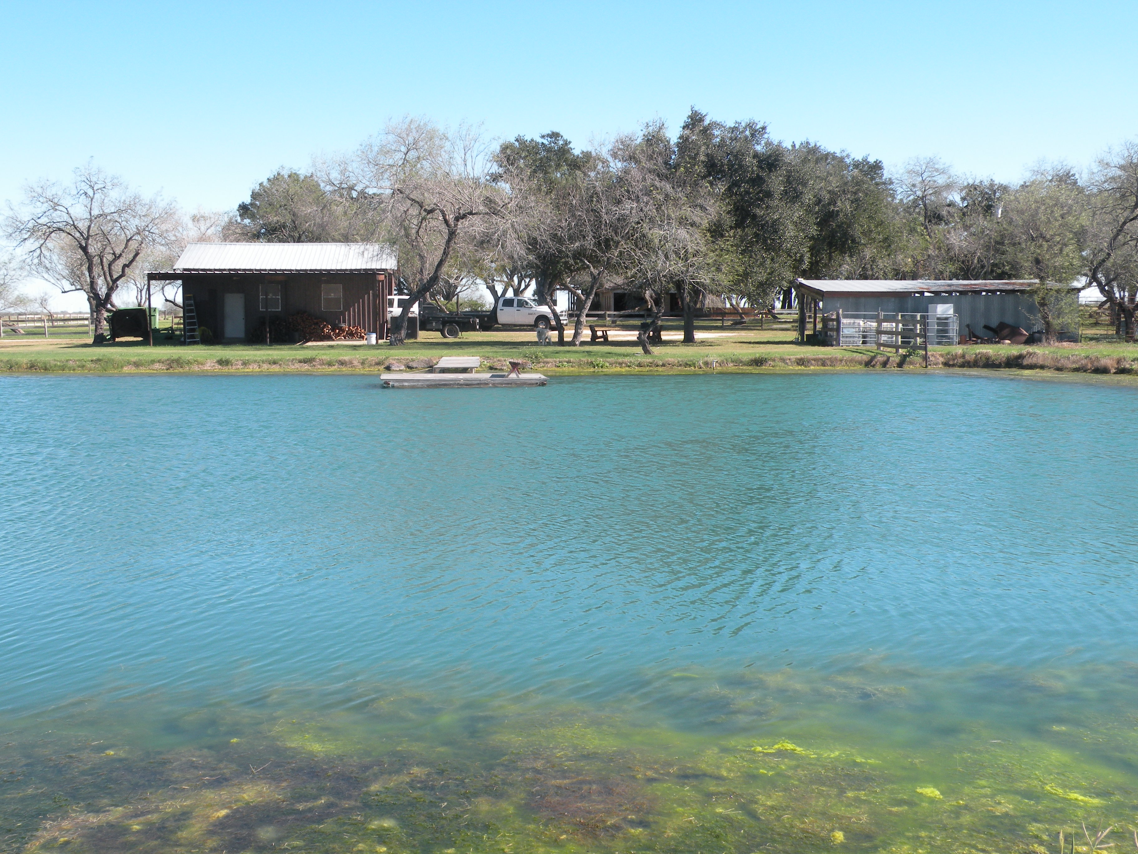 View of Catfish Lake, Shed & Home