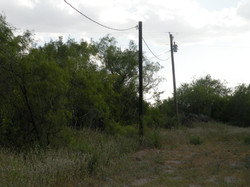 Power Lines at Ranch