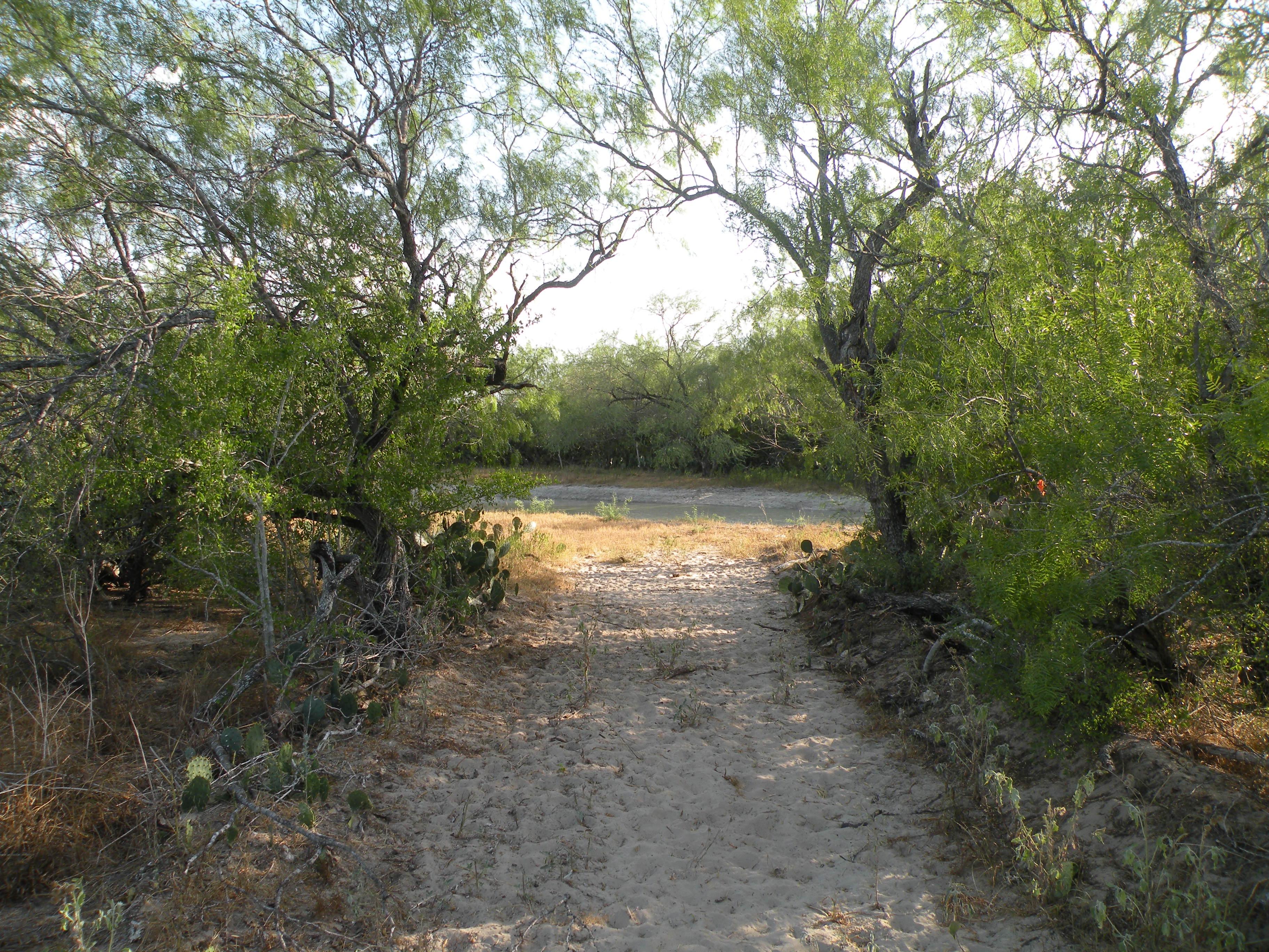 Sendero towards Pond