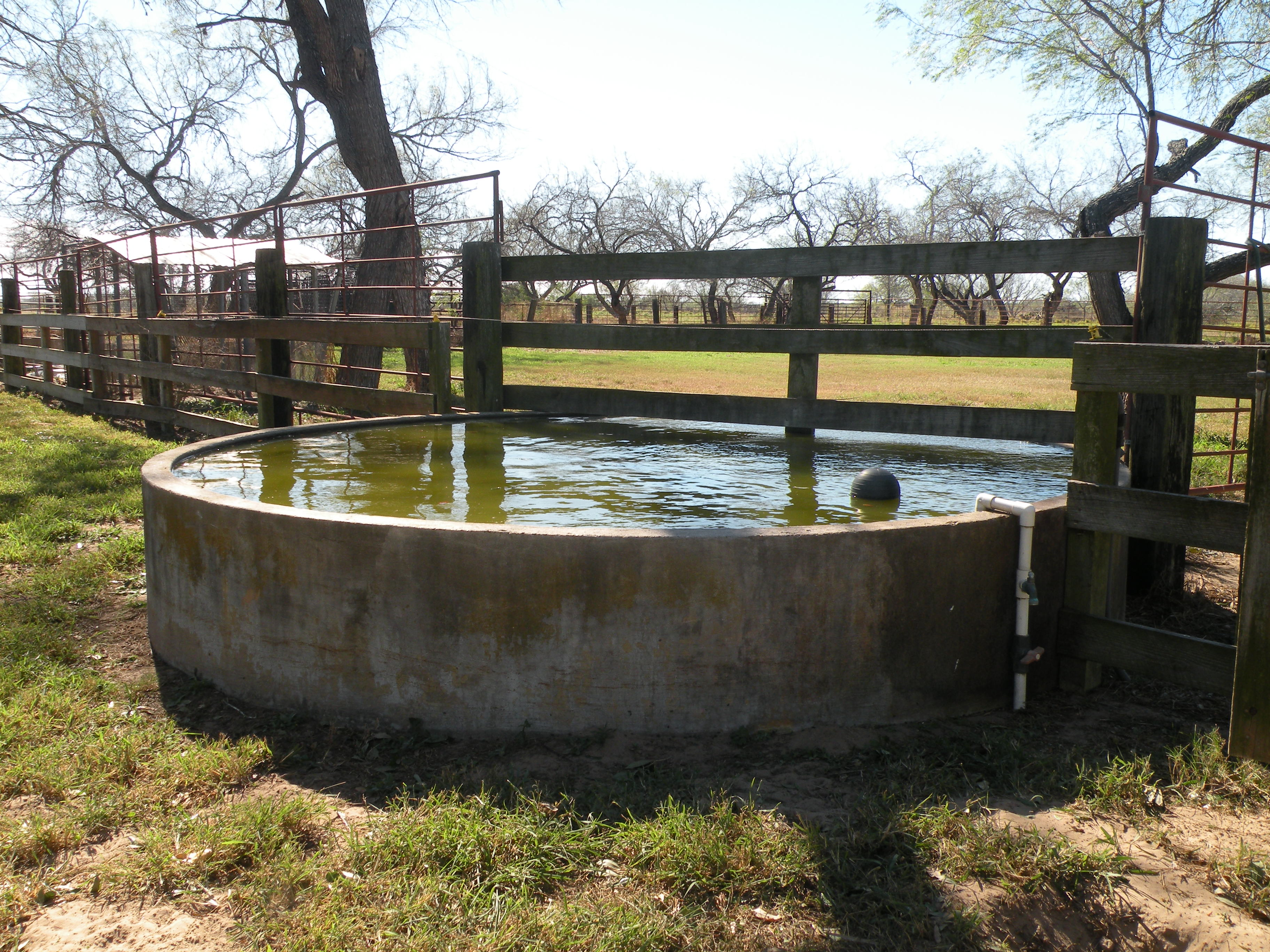 Another View of Water Trough