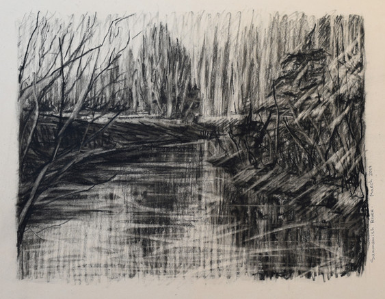 "Sammamish River. Charcoal 9.5""x11.5"". 2019"