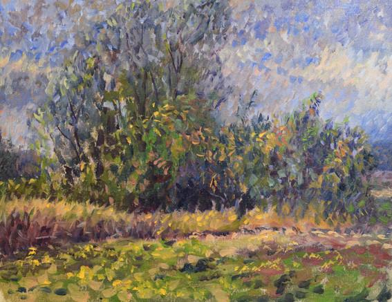 "Wind. Oil on canvas 12""x15"". 2018"