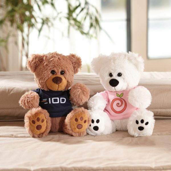 Plush Bear with Embroidered Paws and T-Shirt