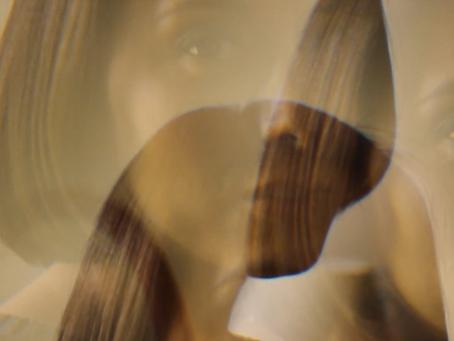 Carolina Nissen – Tu Casa (2013)