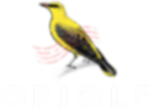 Oriole_Colour_White_Logotype.png