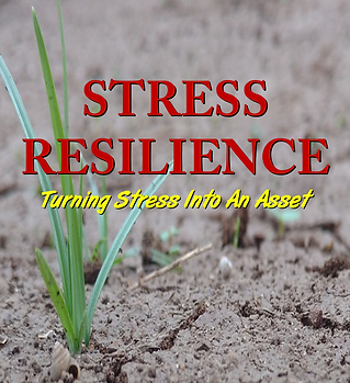 StressResilience.png
