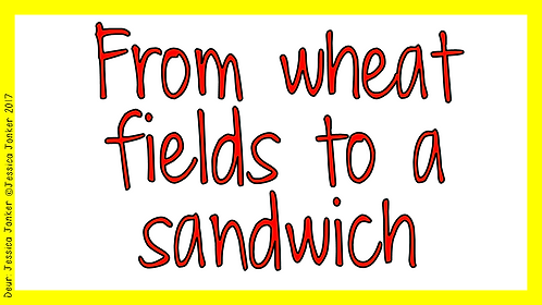 From wheat fields to a sandwich (Gr.4 - SS - Term 3)