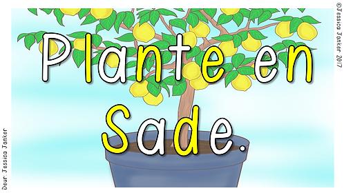 Plante & Sade (Gr.1 - LV. - Kw #3)